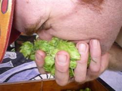 Z15_Harvest_SimpleEarthHops_08172010_250x188px